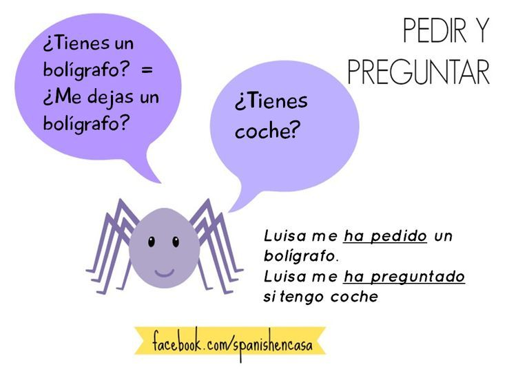 Learn spanish language grammar gender