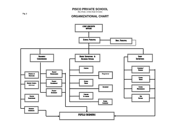 Elementary School Organization Chart | Special Offers