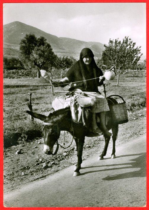Greek spinner on donkey