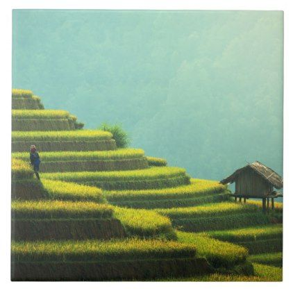 #China agriculture rice harvest ceramic tile - #country gifts style diy gift ideas