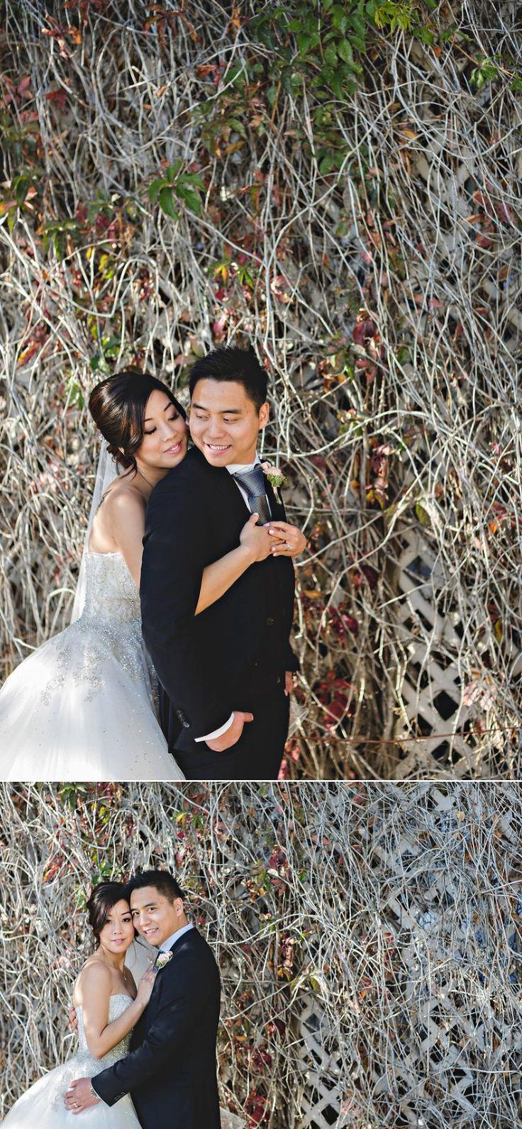 edmonton Hotel MacDonald Wedding photography