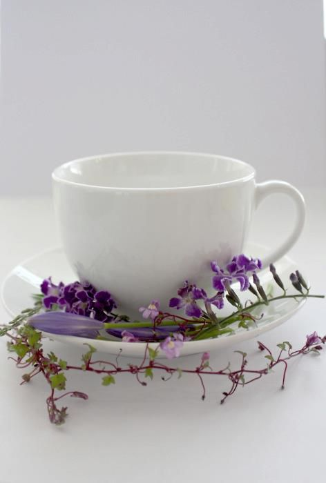 cup in flowers