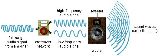 The speaker driver is cone or diaphragm. There are mainly four types of drivers in the Speakers Tweeter, Midrange, Woofer and Sub-Woofer.