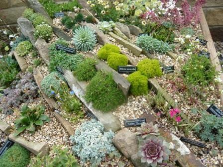 S Landscape Design