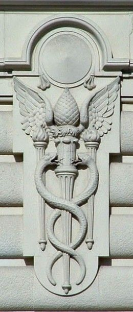 caduceus + pineal gland... AND ... This emblem is still used today all over the US .... Just take a look at the back of any ambulance or medical facility. This was an ancient Annunaki (pre Sumerian) symbol