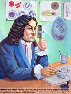 Anton van Leeuwenhoek microscope