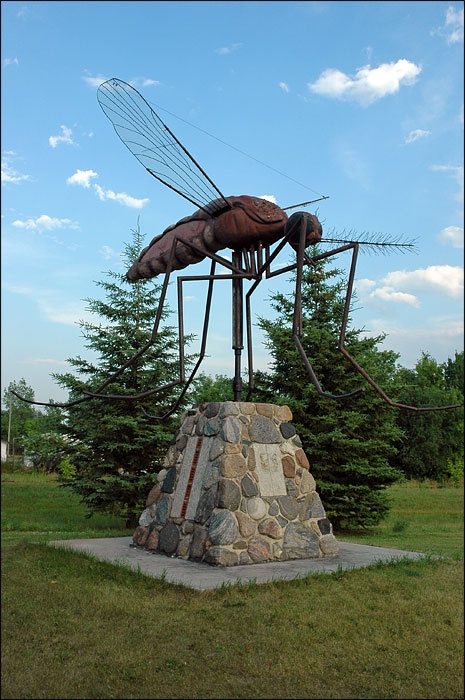 """One of the world's largest statues of a mosquito is in Komarno, Manitoba, Canada.  It is one of several places that claim to be """"The Mosquito Capital."""" Others are Siberia and Yellowknife, Northwest Territories,  Canada. """"Komar"""" is Ukrainian for mosquito. [This part of Canada was settled in 19th c. by many Ukrainians.] Sculpted of steel in 1984, it has a wingspan of 15 feet. It's also a weathervane, swiveling in the wind.  ...Also considered the """"State Bird"""" of several U.S. states..."""