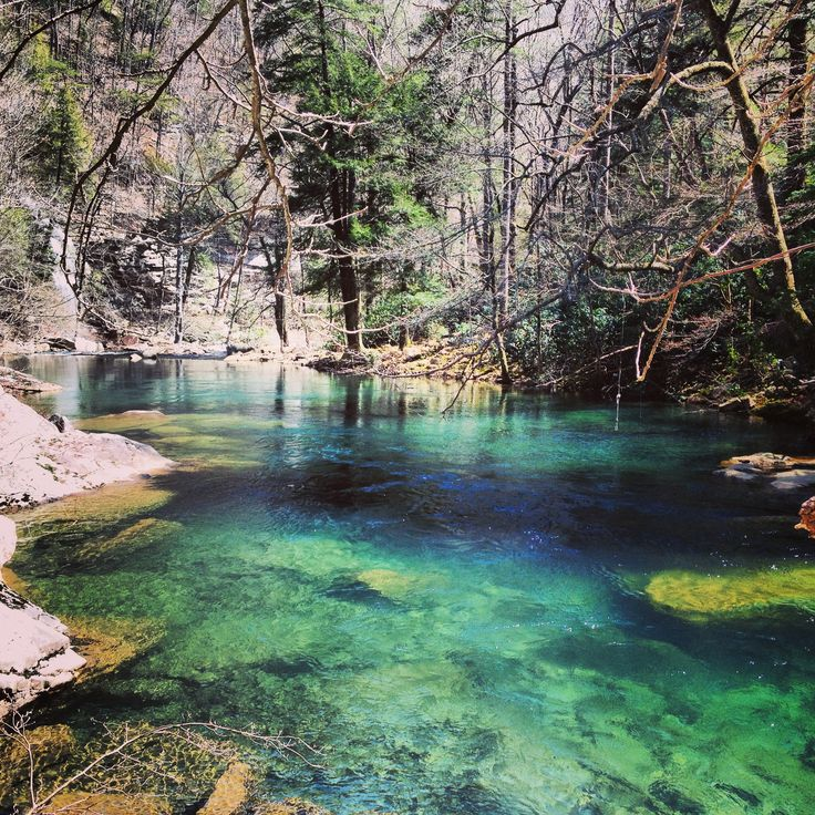 343 Best Tennessee Images On Pinterest