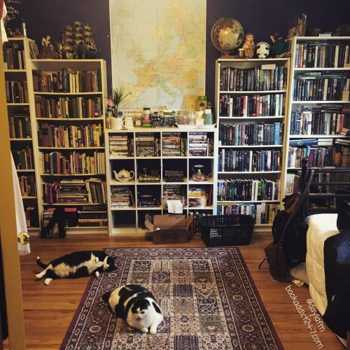 Confessions of a Book Addict - everything about this space makes me happy (ok maybe I would replace that rug, but still ships, globes, maps, book and cats, perfection)
