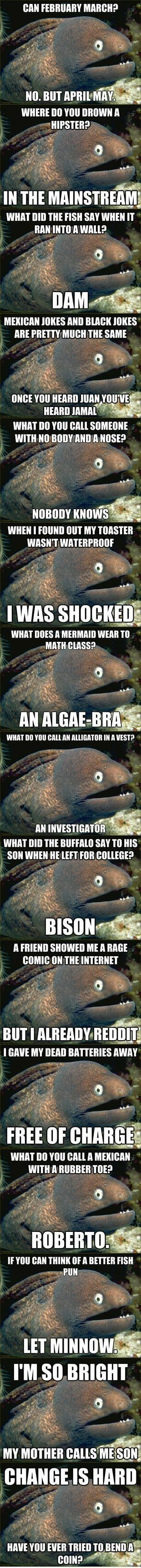 Bad joke eel strikes again.: