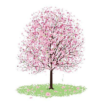 봄 나무 일러스트 : 네이버 카페