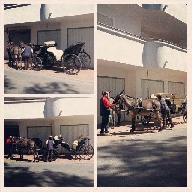Goodbye #horses #torrox #andalucia #spain #walk #instaphoto #instamood #sunday