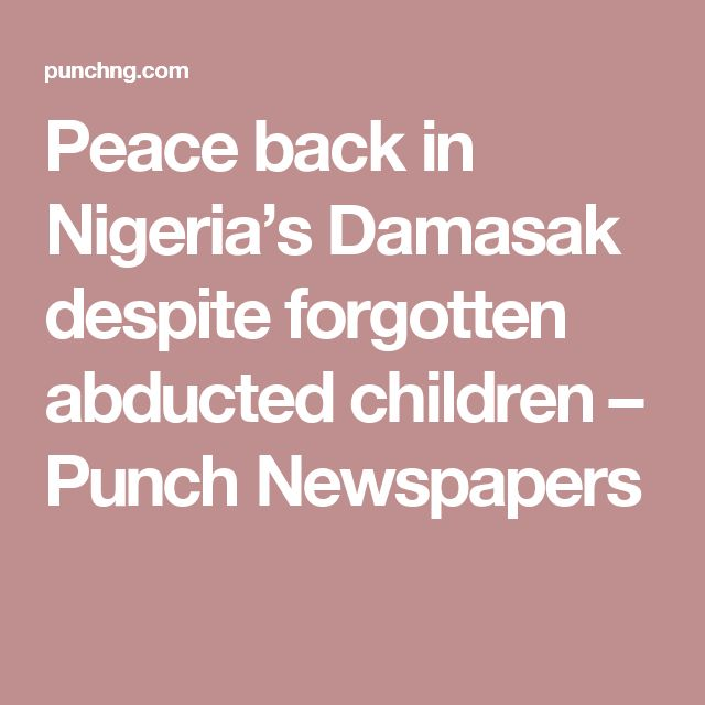 Peace back in Nigeria's Damasak despite forgotten abducted children – Punch Newspapers