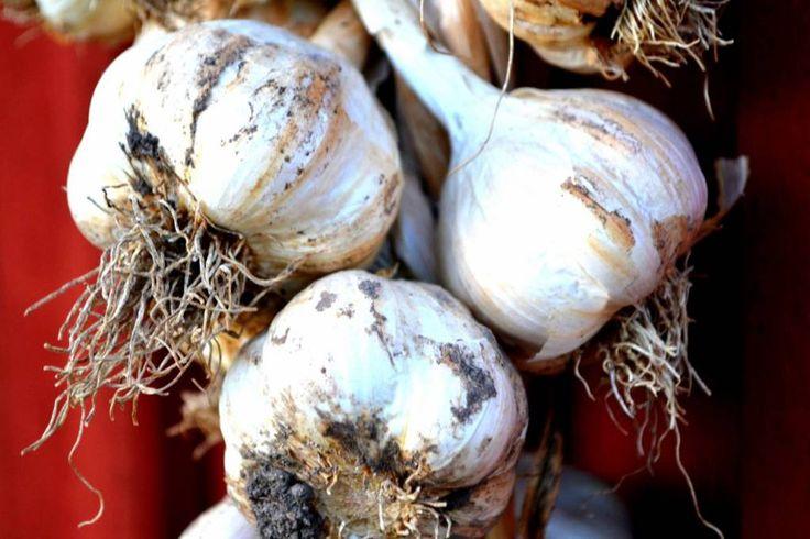 Recept på crepes med räkor och spenat/ vitlök