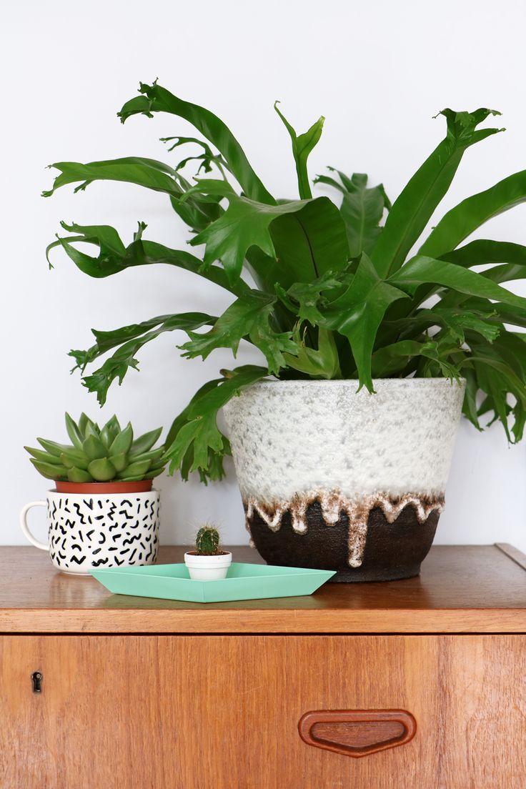 MY ATTIC SHOP / vintage flowerpot / retro / greens / plants  www.entermyattic.com