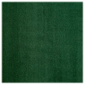 Bass Pro Shops Deluxe Marine Carpet - 6' x 1' - Hunter Green