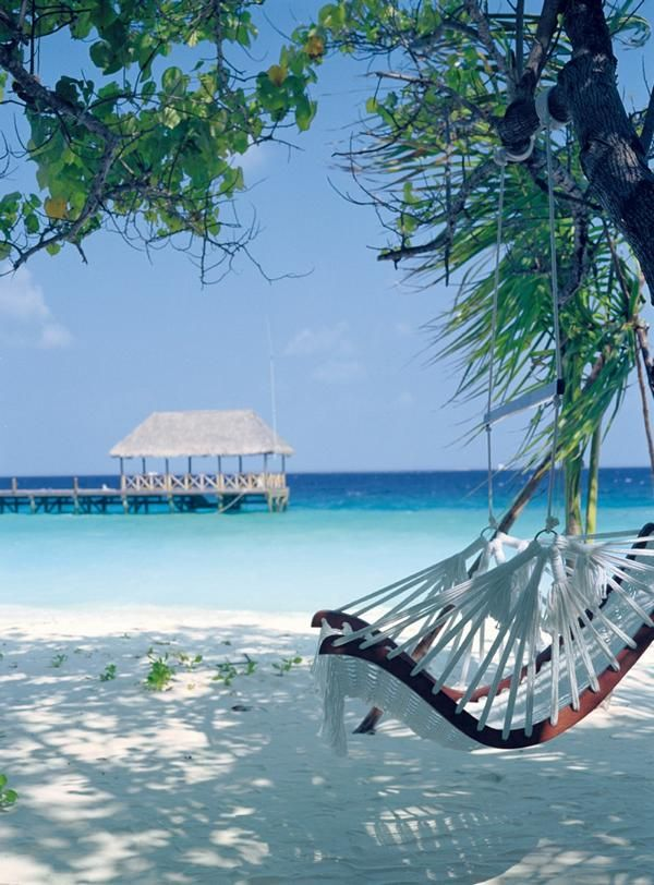 Cocoa Island, #Maldives | December Honeymoon Destinations http://www.pinterest.com/FLDesignerGuide/december-honeymoon-destinations/