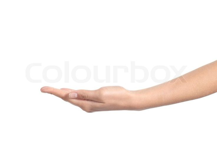 Image result for hand holding something up