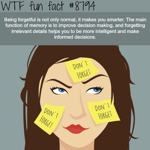 25 Weird and WTF Facts Improve Your Brain