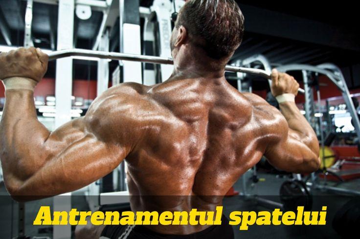 www.slabire.co.nf/antrenament-spate