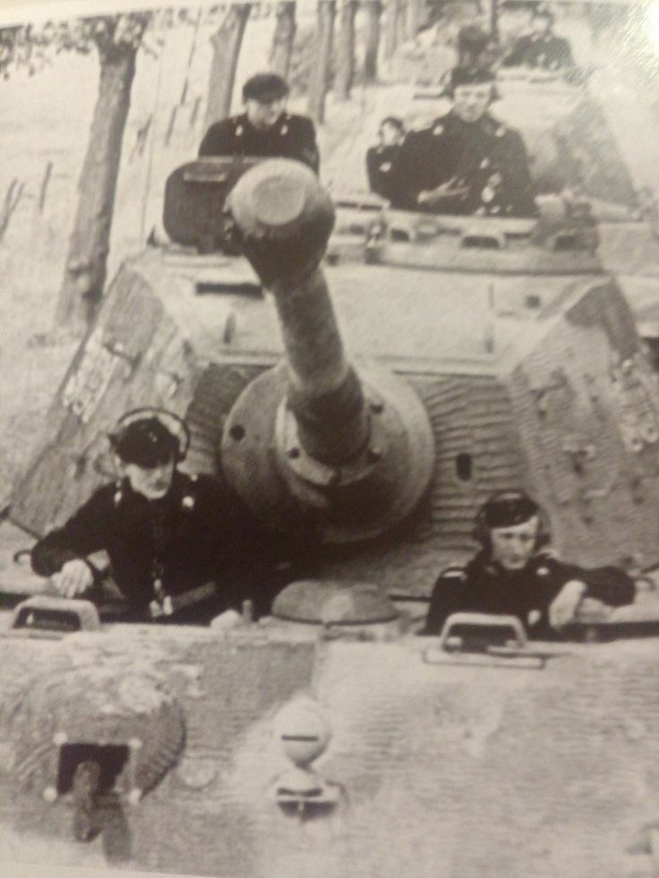 Tiger II from the Panzer Abteilung, 503