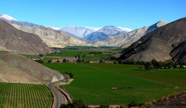 Valle de Copiapó Región de Atacama