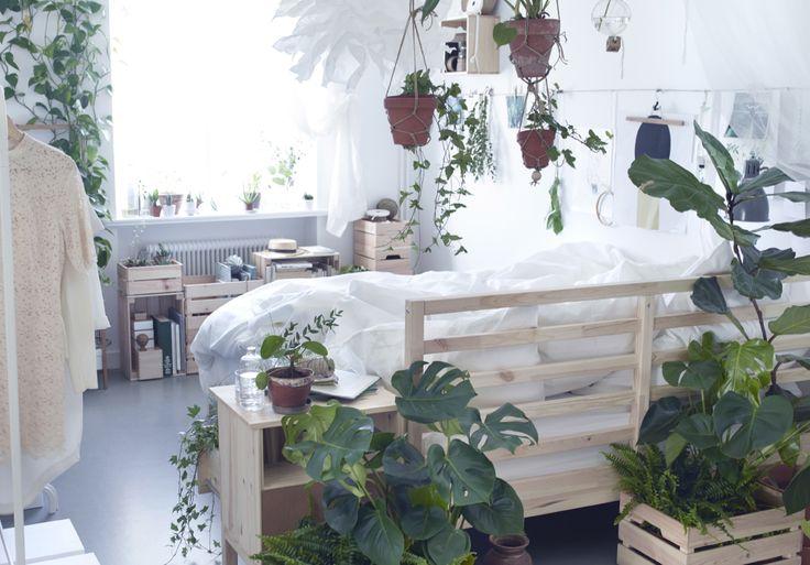 Indret soveværelset i en naturlig stil ved at hænge planter i urtepotteskjulere rundt om sengen