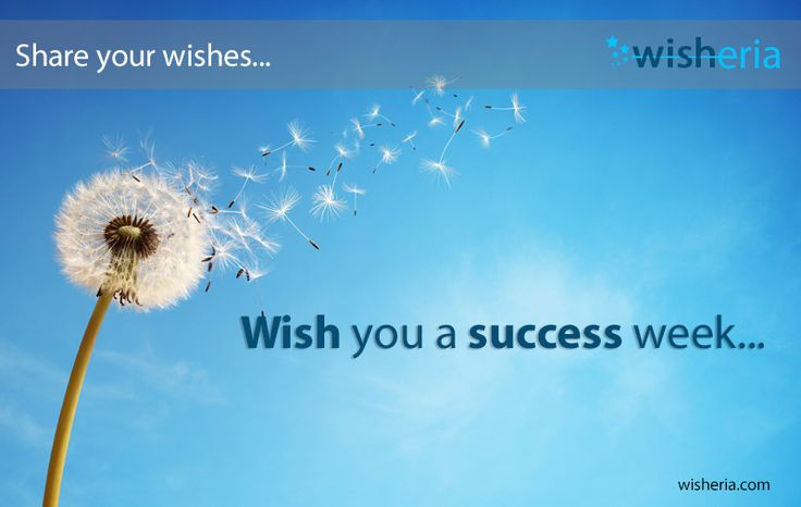 Wish you a success week... #wish #success #mywish