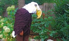 A No Sew Bald Eagle Costume. Easy on and easy off, NO SEW—just cut, cut ,cut and glue.