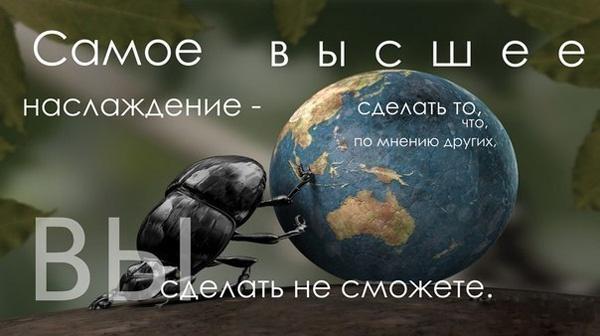 Самое высшее наслаждение - сделать то, что по мнение других вы сделать не сможете. http://xn----8sbncanestccdde3apij1g.xn--p1ai/