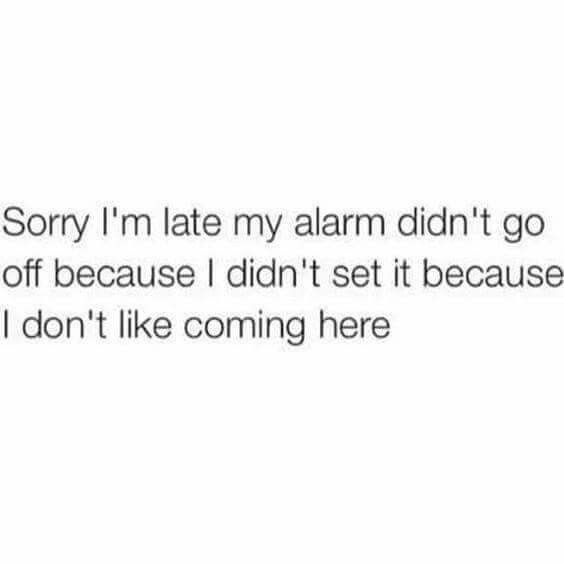 Sorry I'm late. My alarm didn't go off because I didn't set it because I don't like coming here.