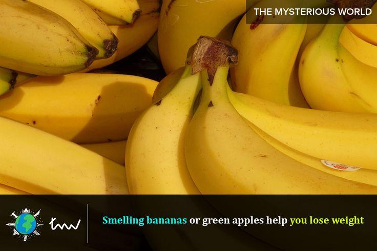 #fruits #banana #facts