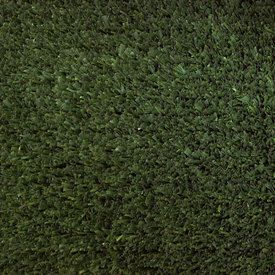 Batters Up - Sports Turf Carpet - General Purpose Artificial Grass Flooring