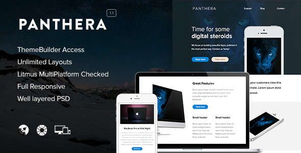 180 Absolute Best Responsive Email Templates - Panthera - Responsive Email + Themebuilder Access