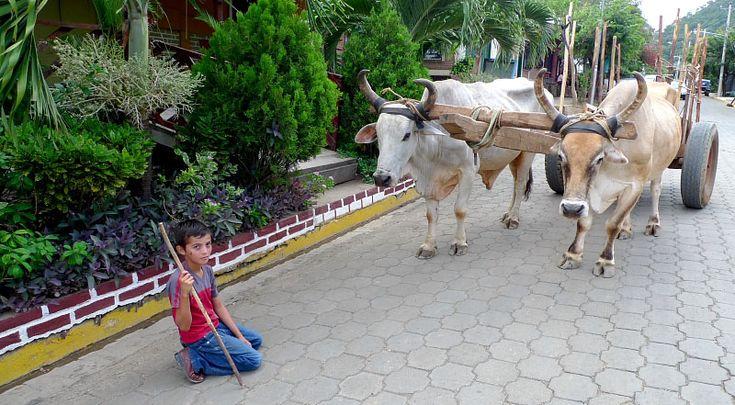 Working Boy - San juan del sur, Rivas - Nicaragua