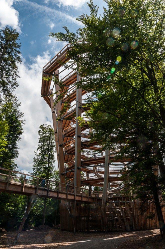 Der Aussichtsturm Schwarzwald baumwipfelpfad