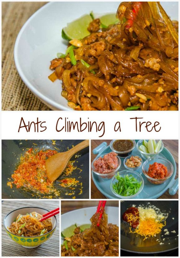 Ants Climbing a Tree (Spicy Pork & Orange Cellophane Noodles) From Luna Cafe