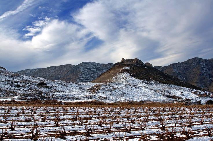 Viña en invierno con castillo de Jubera al fondo. Foto de Carlos Glera (Trece Marketing) para #ReservaLaRioja