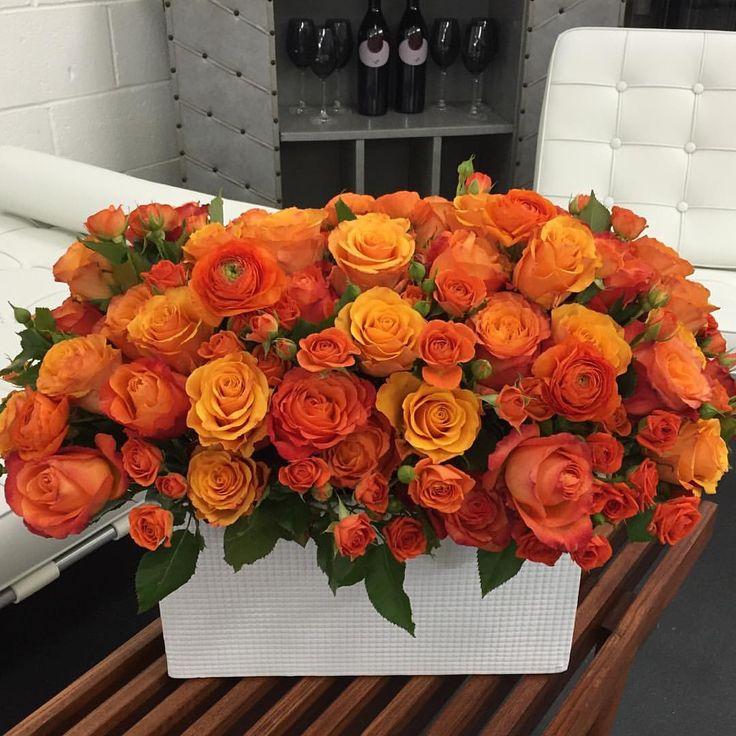 "Carey & Tara Hotchkis on Instagram: ""A sneak peek of the collection, Rhapsody in Orange before she & her friends headed to their Magazine shoot with one of our Fav Designers!! #BeATallPoppy #instylemagazine #oranges #roses #ranunculus #flowers #orange #floraldesign #flowerlovers #flowerstagram #bloombigger #mdlla #mdlny #larealestate #interiordesign #orangeisthenewblack #interiordesigner #flowerpop #beverlyhills #styleblog #designblog #weddingblog #styleguide #theknot #artblog #voguemagazine"