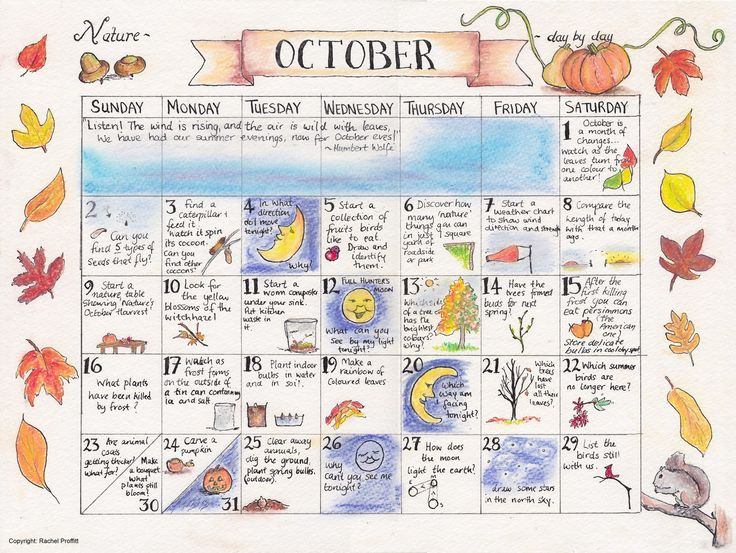 Some time ago, Ann Voskamp  was posting little pictures from a book : Natural Science Through the Seasons: 100 Teaching Units.  The book is ...