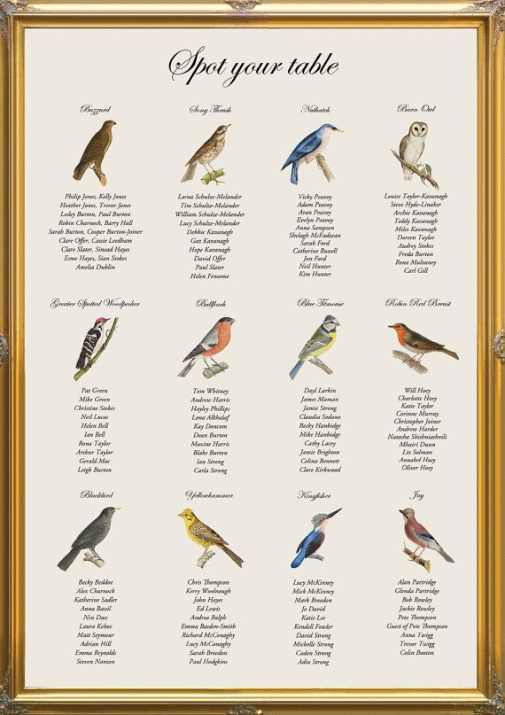 Vintage Bird Spotting Table Plan for nature by inkloveweddings, £40.00