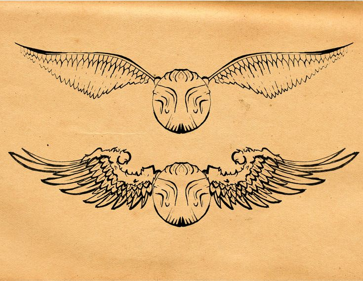 Harry Potter Golden Snitch Tattoos images