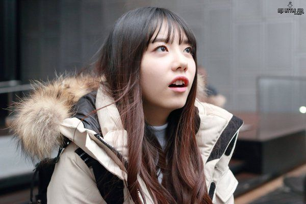 http://www.hallyukstar.com/2016/03/29/kim-sohye-produce-101-sister-next-door/
