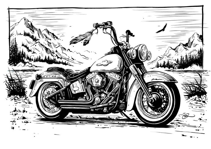 Harley Davidson / Bikers Choice