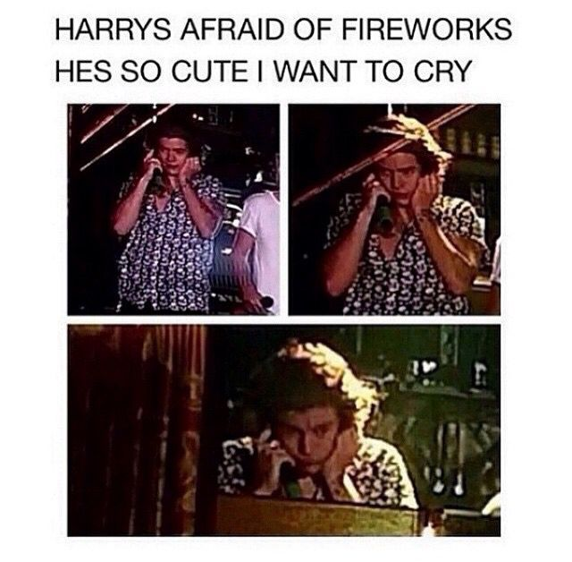 I also remember him screaming in one of the video diaries from fireworks. Aww, he's adorable