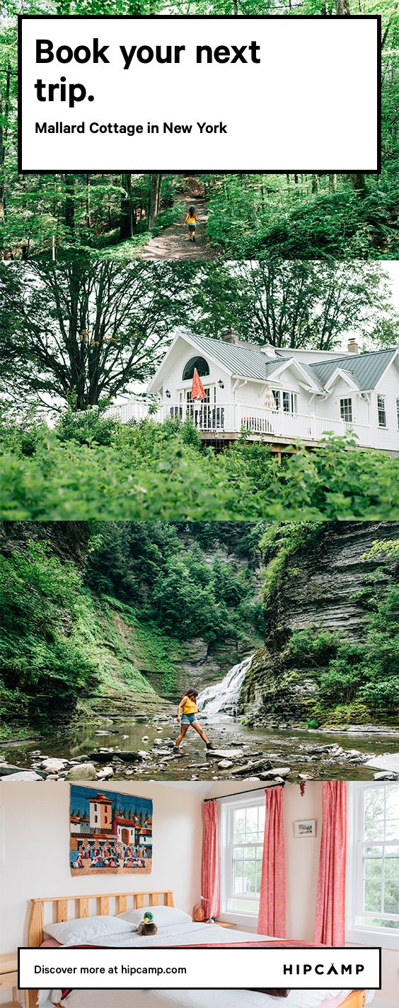 Pet friendly cabin camping in New York