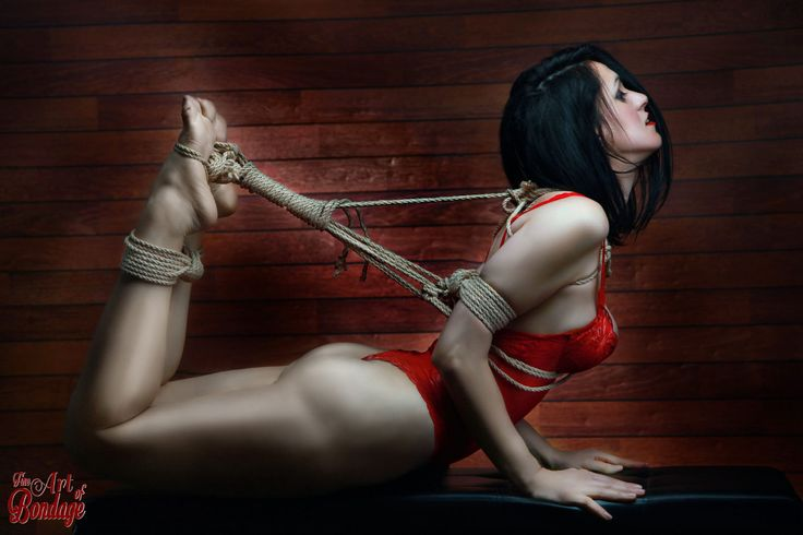 Hogtied, Red Lingerie - Fine Art Of Bondage By Rod Meier -8437