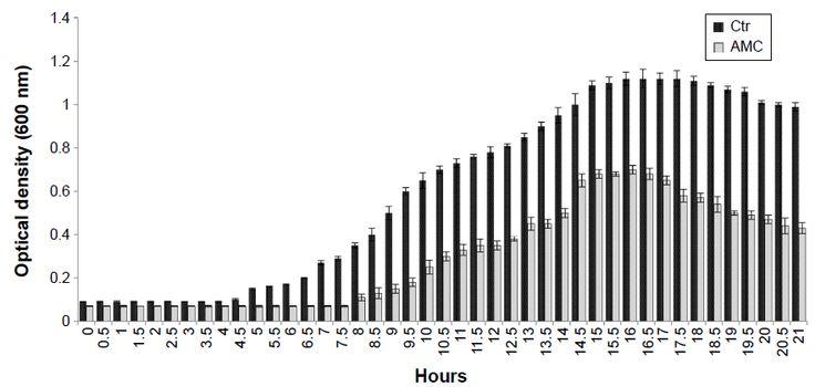 Figure 6 Growth curves of Pseudomonas aeruginosa, Escherichia coli, and Enterococcus faecalis incubated with 2.5 μM AMC (gray bar) and in Ctr (black bar).