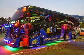 Image result for luxury buses