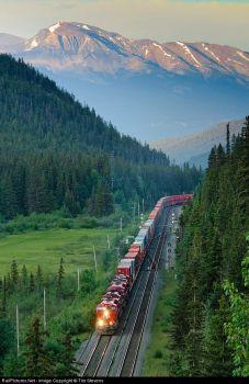 Canadian Pacific Railway, Jasper, Alberta, Canada by Tim Stevens